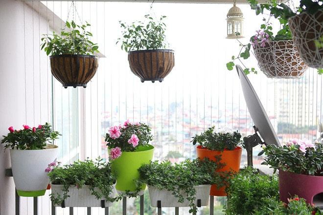 Những tấm rèm cửa sẽ hạn chế sự chói chang của ánh nắng mùa hè