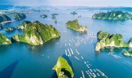 citadines marina halong