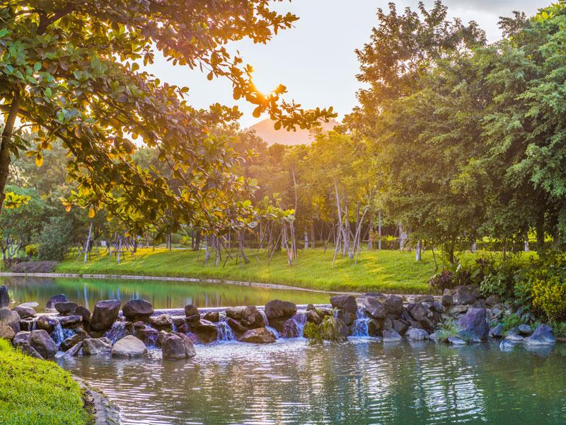 Dòng suối tự nhiên bắt nguồn từ vùng đất địa linh Suối Ngọc – Vua Bà