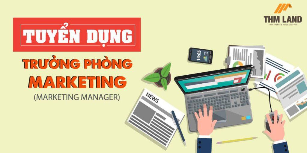 THM Land tuyển dụng trưởng phòng Marketing thu nhập hấp dẫn